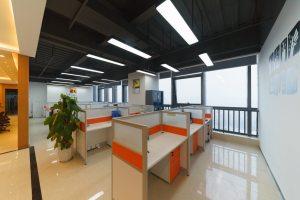大型办公室 南园枫叶
