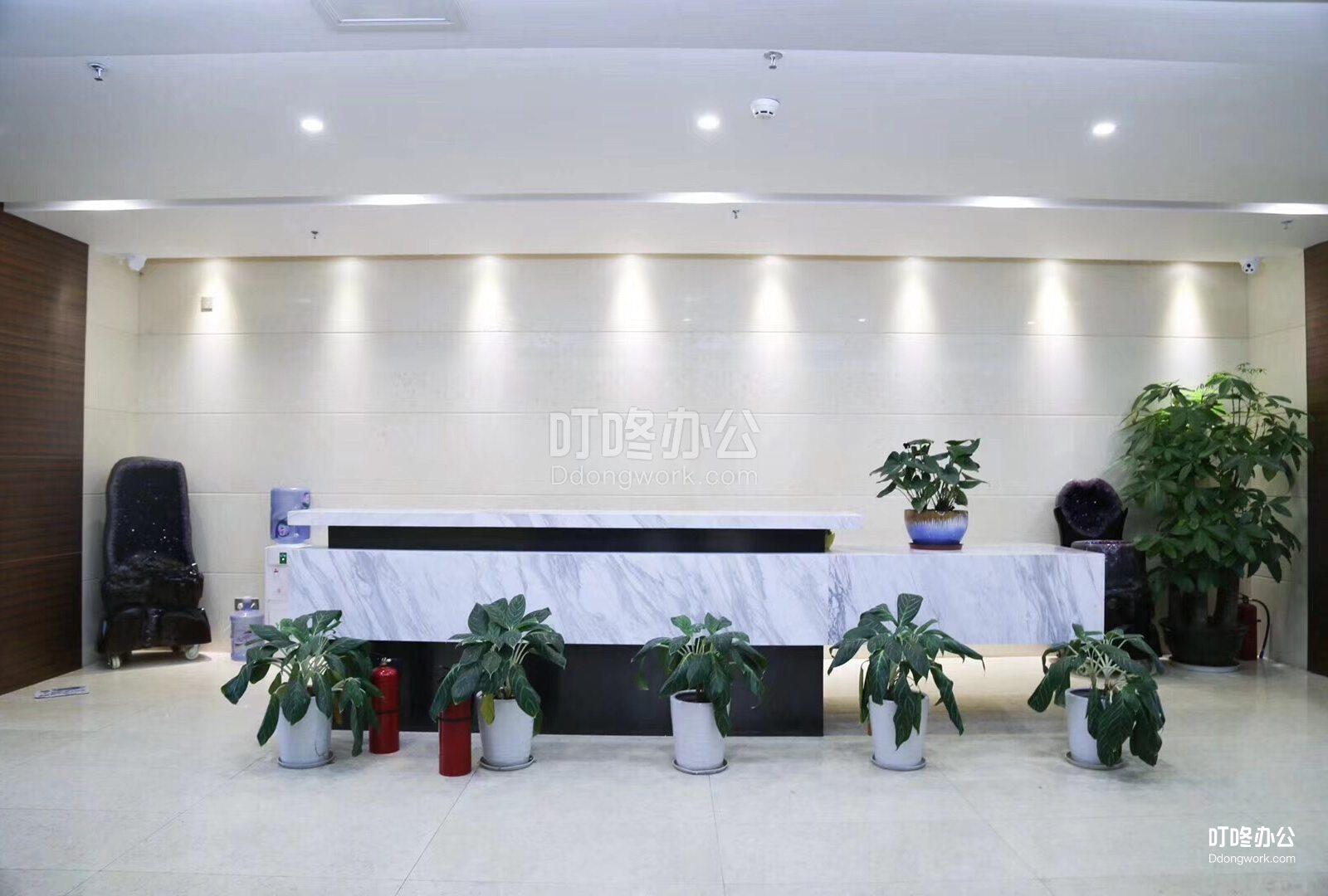 超大型办公室 大中华国际金融中心