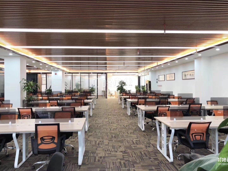 超大型办公室 深圳湾科技生态园