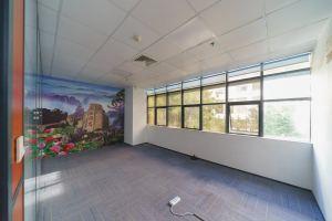 小型办公室 绿创空间
